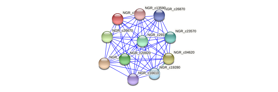 NGR_c23310 protein (Sinorhizobium fredii NGR234) - STRING interaction network