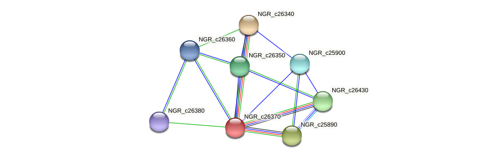 NGR_c26370 protein (Sinorhizobium fredii NGR234) - STRING interaction network