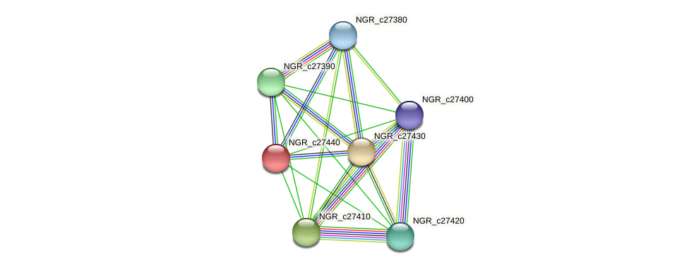 NGR_c27440 protein (Sinorhizobium fredii NGR234) - STRING interaction network