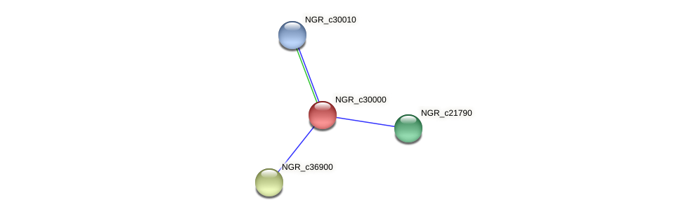 NGR_c30000 protein (Sinorhizobium fredii NGR234) - STRING interaction network