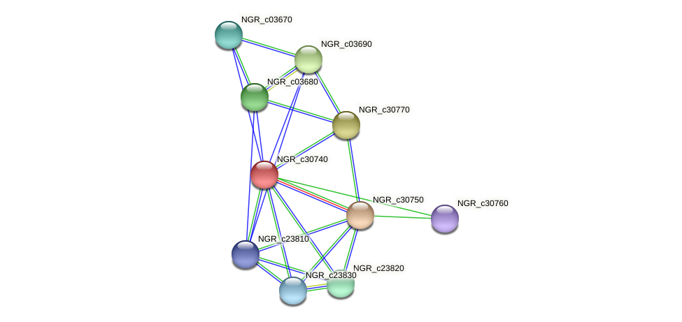 NGR_c30740 protein (Sinorhizobium fredii NGR234) - STRING interaction network