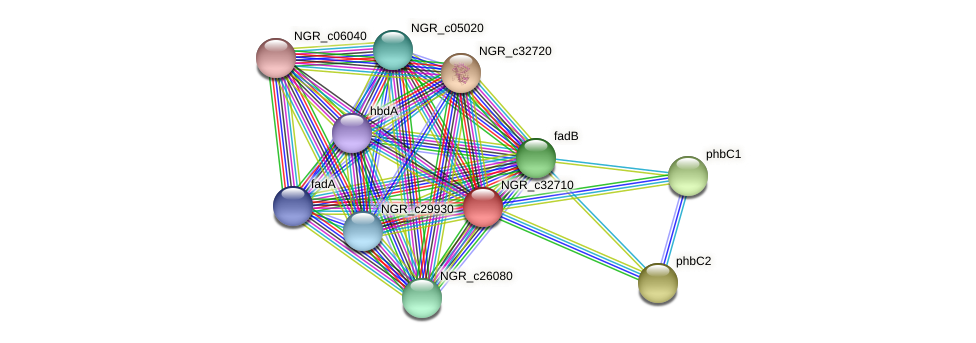 NGR_c32710 protein (Sinorhizobium fredii NGR234) - STRING interaction network