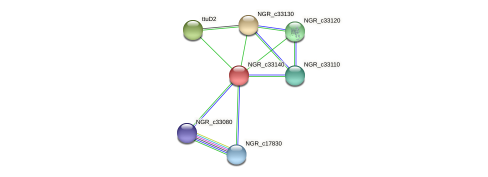 NGR_c33140 protein (Sinorhizobium fredii NGR234) - STRING interaction network
