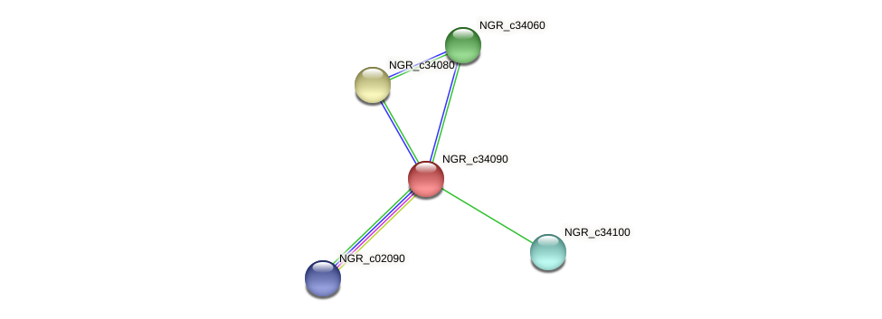NGR_c34090 protein (Sinorhizobium fredii NGR234) - STRING interaction network