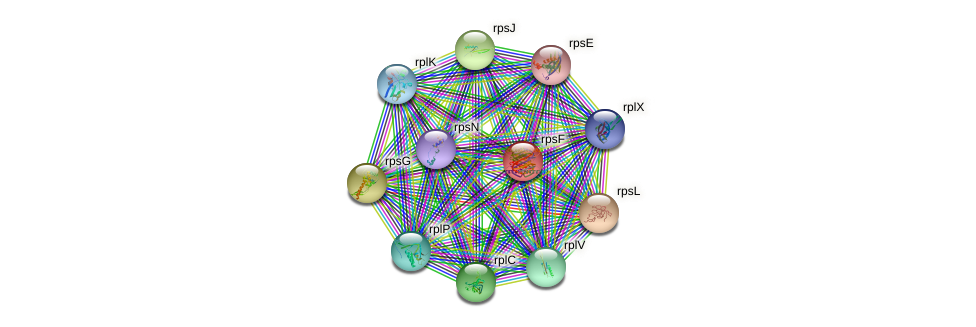 rpsF protein (Delftia acidovorans) - STRING interaction network