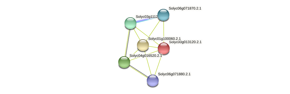 Solyc00g013120.2.1 protein (Solanum lycopersicum) - STRING interaction network