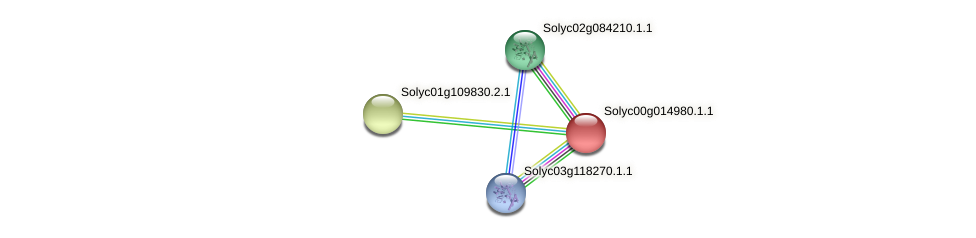 Solyc00g014980.1.1 protein (Solanum lycopersicum) - STRING interaction network