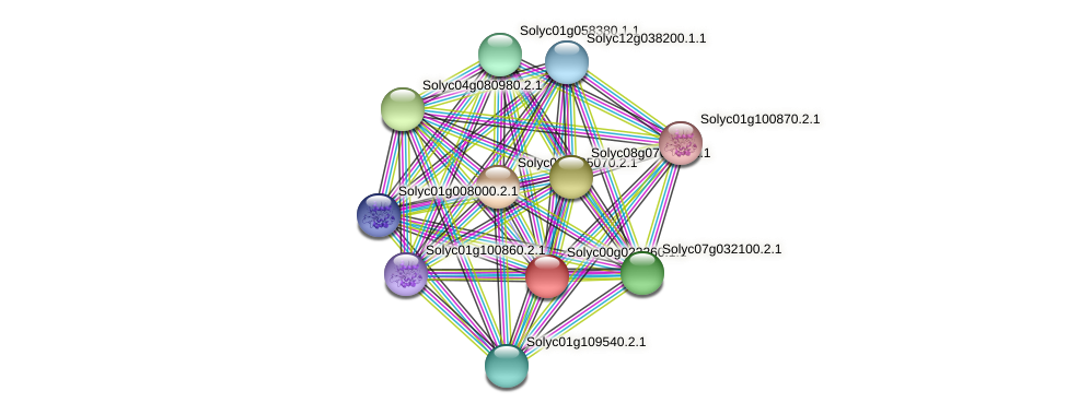 Solyc00g023260.1.1 protein (Solanum lycopersicum) - STRING interaction network