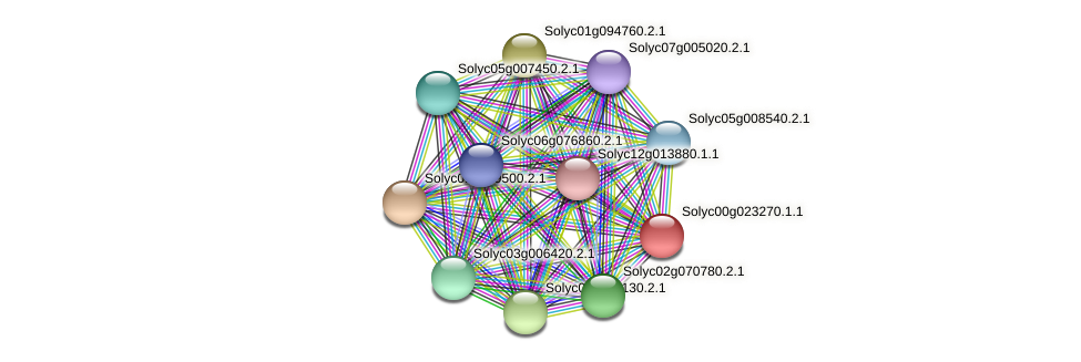 Solyc00g023270.1.1 protein (Solanum lycopersicum) - STRING interaction network