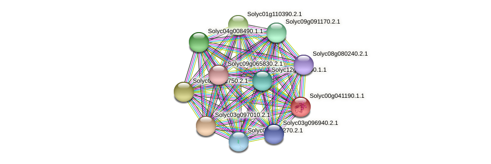 Solyc00g041190.1.1 protein (Solanum lycopersicum) - STRING interaction network