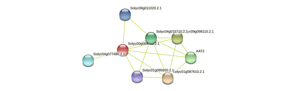 Solyc00g084750.2.1 protein (Solanum lycopersicum) - STRING interaction network
