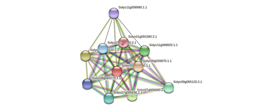 Solyc00g090130.1.1 protein (Solanum lycopersicum) - STRING interaction network