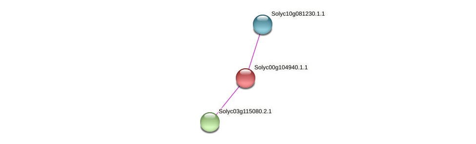 Solyc00g104940.1.1 protein (Solanum lycopersicum) - STRING interaction network