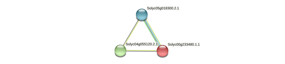 Solyc00g233480.1.1 protein (Solanum lycopersicum) - STRING interaction network