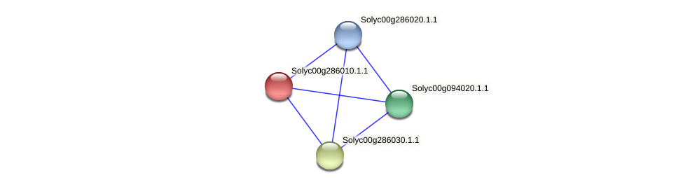 Solyc00g286010.1.1 protein (Solanum lycopersicum) - STRING interaction network