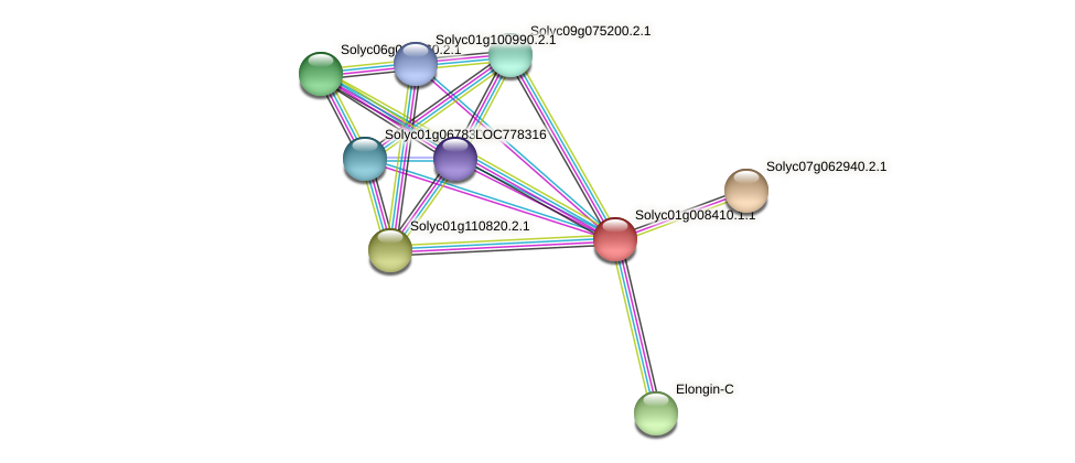 Solyc01g008410.1.1 protein (Solanum lycopersicum) - STRING interaction network