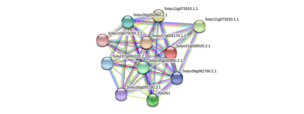 Solyc01g008520.2.1 protein (Solanum lycopersicum) - STRING interaction network