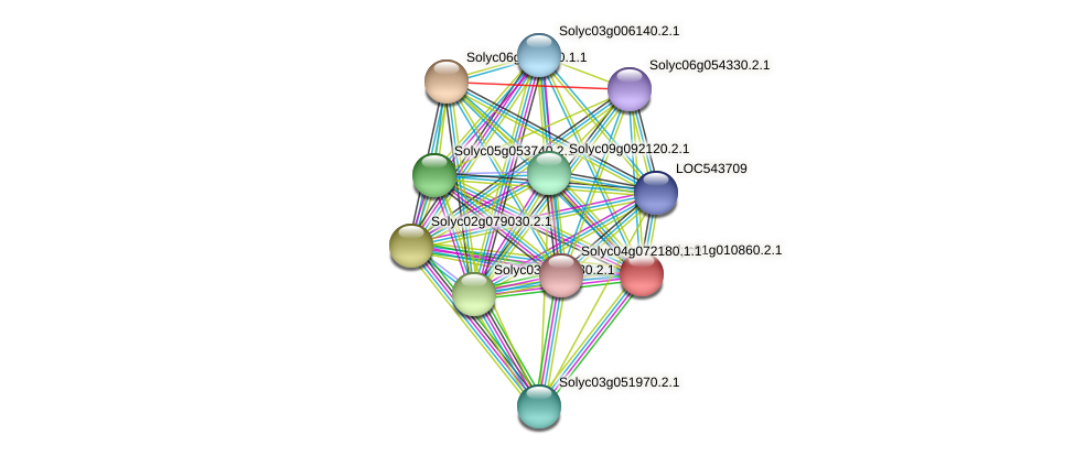 Solyc01g010860.2.1 protein (Solanum lycopersicum) - STRING interaction network