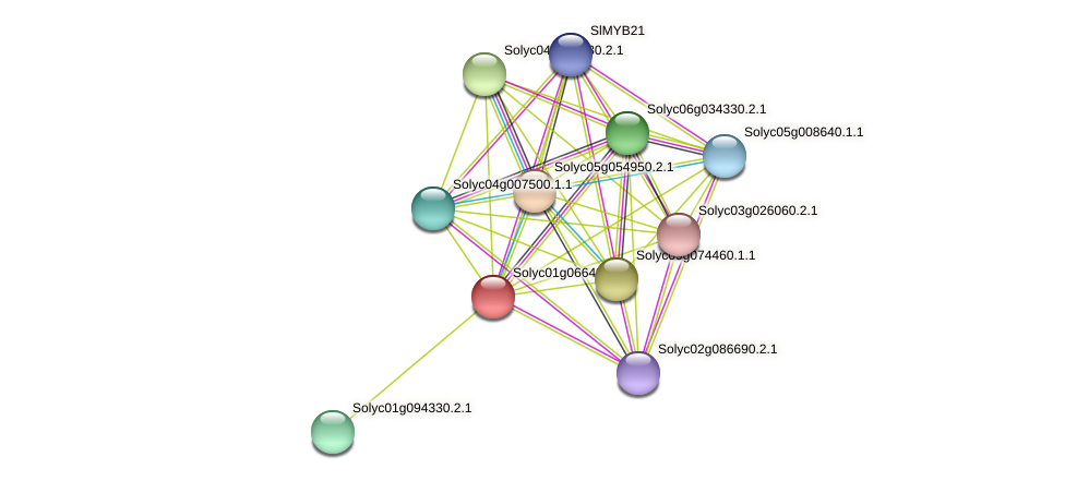 Solyc01g066430.2.1 protein (Solanum lycopersicum) - STRING interaction network