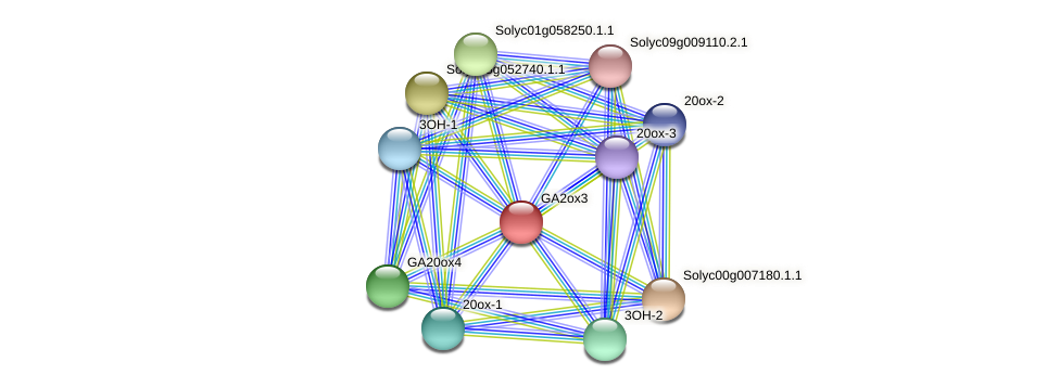 GA2ox3 protein (Solanum lycopersicum) - STRING interaction network