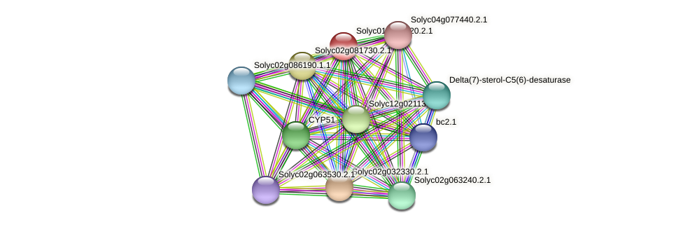 Solyc01g091320.2.1 protein (Solanum lycopersicum) - STRING interaction network