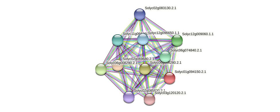 Solyc01g094150.2.1 protein (Solanum lycopersicum) - STRING interaction network