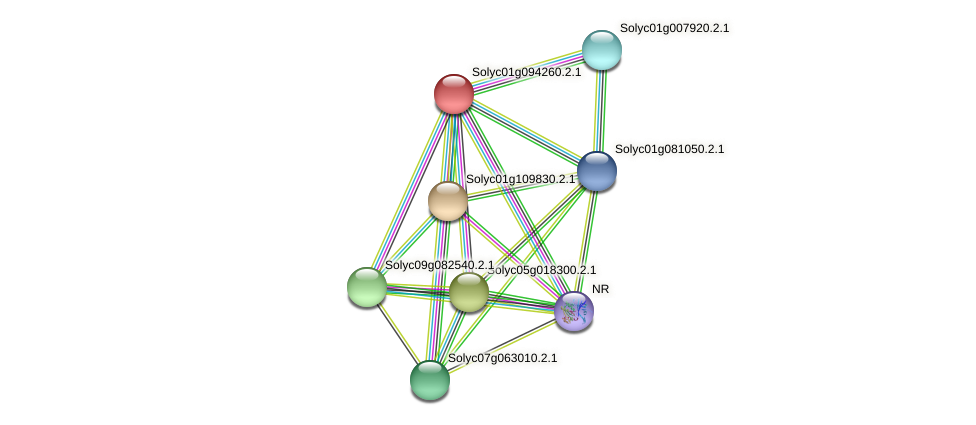 Solyc01g094260.2.1 protein (Solanum lycopersicum) - STRING interaction network
