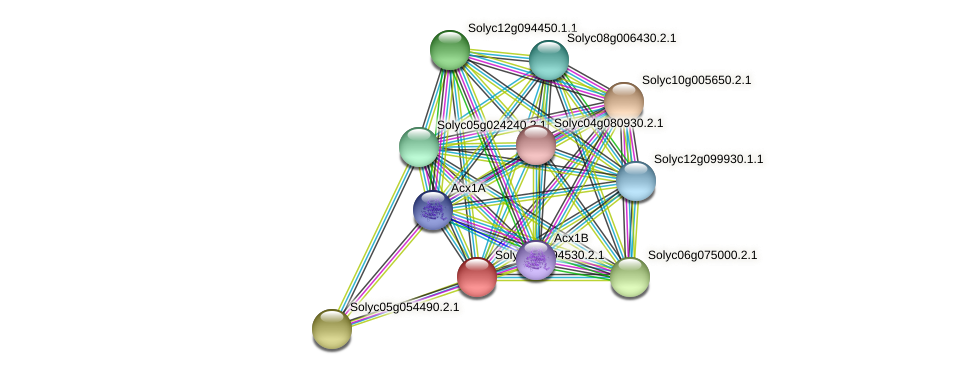 101251817 protein (Solanum lycopersicum) - STRING interaction network