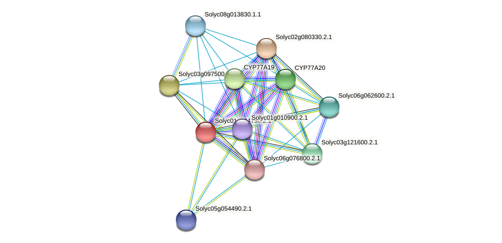 101262353 protein (Solanum lycopersicum) - STRING interaction network