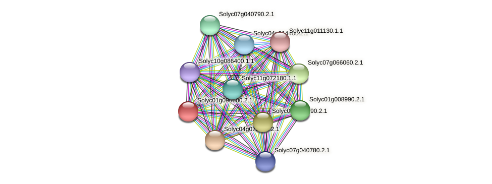 Solyc01g096600.2.1 protein (Solanum lycopersicum) - STRING interaction network