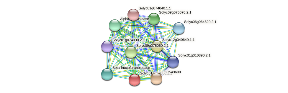 Solyc01g097000.2.1 protein (Solanum lycopersicum) - STRING interaction network