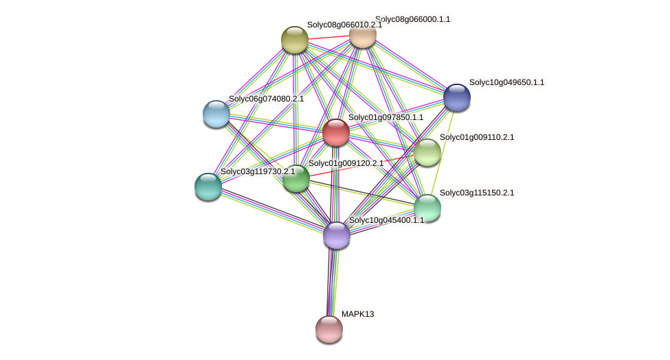 Solyc01g097850.1.1 protein (Solanum lycopersicum) - STRING interaction network