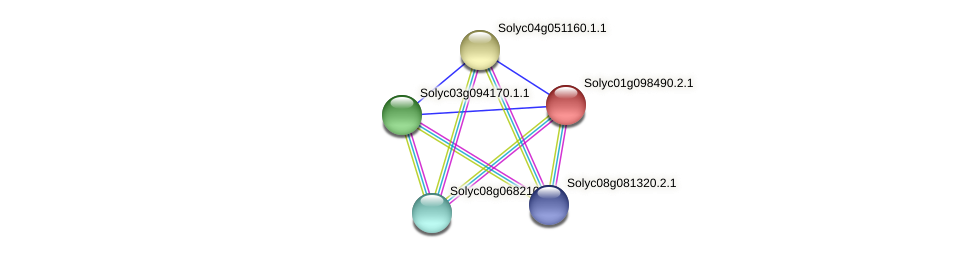 Solyc01g098490.2.1 protein (Solanum lycopersicum) - STRING interaction network
