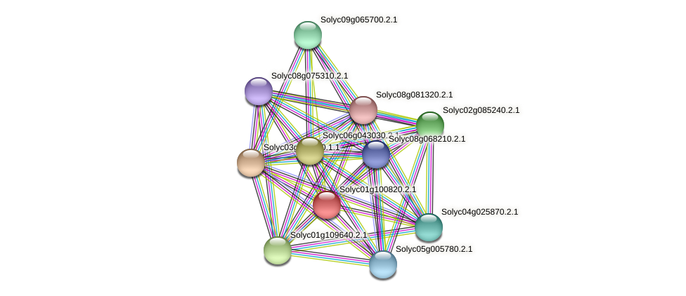 Solyc01g100820.2.1 protein (Solanum lycopersicum) - STRING interaction network