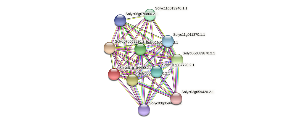 101263947 protein (Solanum lycopersicum) - STRING interaction network