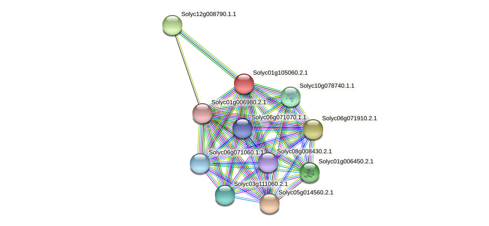 Solyc01g105060.2.1 protein (Solanum lycopersicum) - STRING interaction network