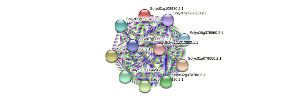 Solyc01g105530.2.1 protein (Solanum lycopersicum) - STRING interaction network