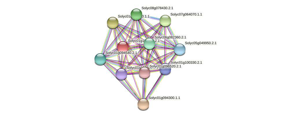 Solyc01g108430.2.1 protein (Solanum lycopersicum) - STRING interaction network