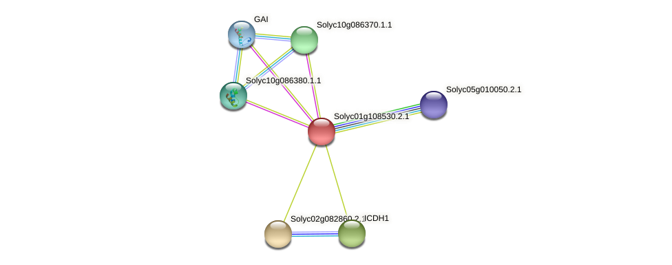 101248819 protein (Solanum lycopersicum) - STRING interaction network
