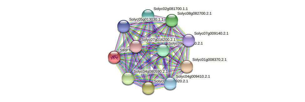 101268039 protein (Solanum lycopersicum) - STRING interaction network