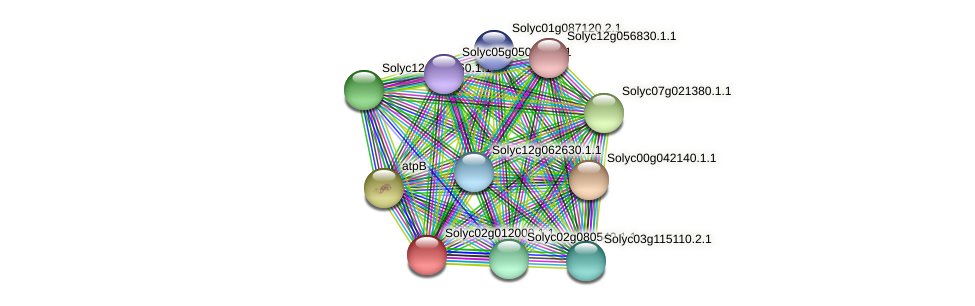 Solyc02g012000.1.1 protein (Solanum lycopersicum) - STRING interaction network