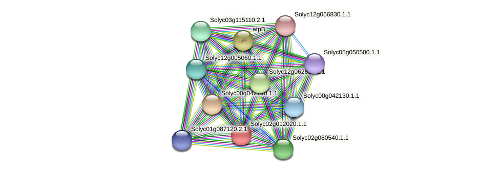 Solyc02g012020.1.1 protein (Solanum lycopersicum) - STRING interaction network