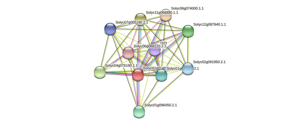 Solyc02g014830.2.1 protein (Solanum lycopersicum) - STRING interaction network