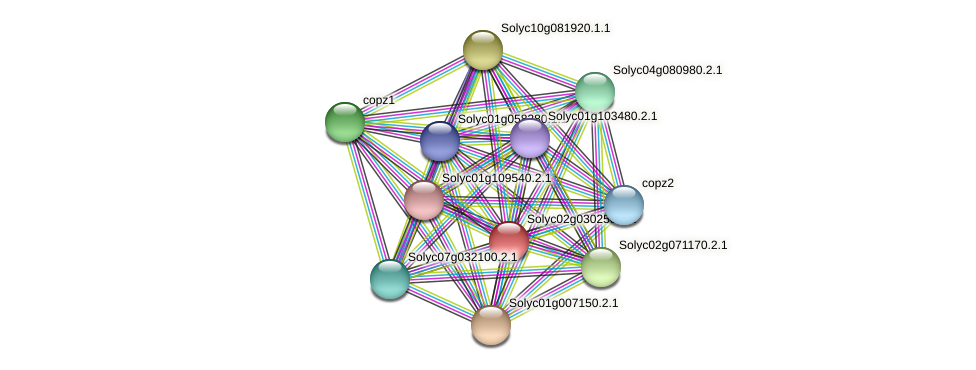 Solyc02g030250.2.1 protein (Solanum lycopersicum) - STRING interaction network
