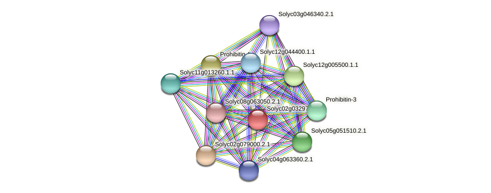 Solyc02g032970.2.1 protein (Solanum lycopersicum) - STRING interaction network