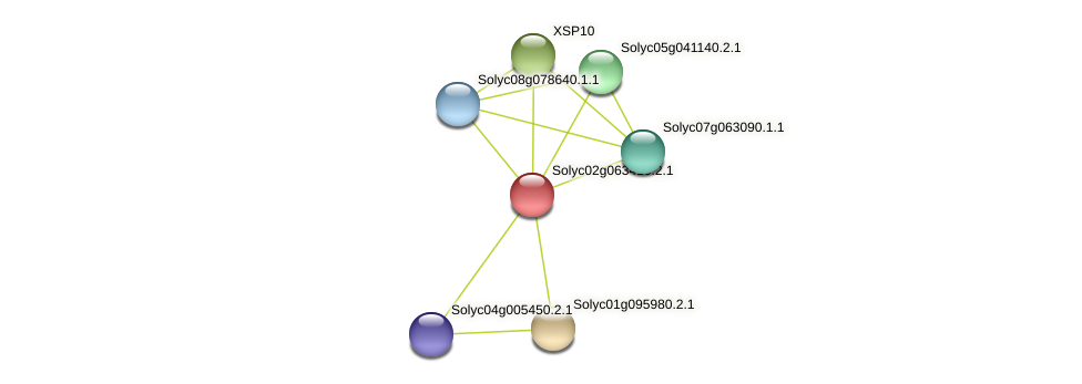 Solyc02g063410.2.1 protein (Solanum lycopersicum) - STRING interaction network