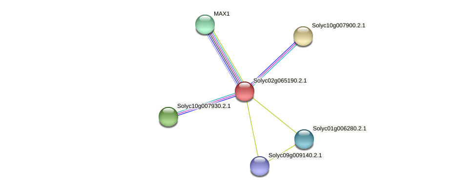 Solyc02g065190.2.1 protein (Solanum lycopersicum) - STRING interaction network