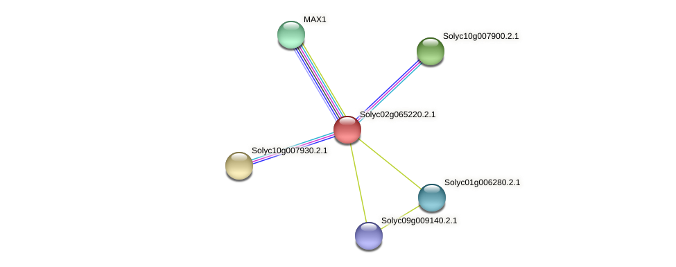 Solyc02g065220.2.1 protein (Solanum lycopersicum) - STRING interaction network