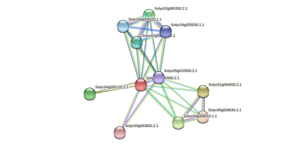 Solyc02g065590.2.1 protein (Solanum lycopersicum) - STRING interaction network