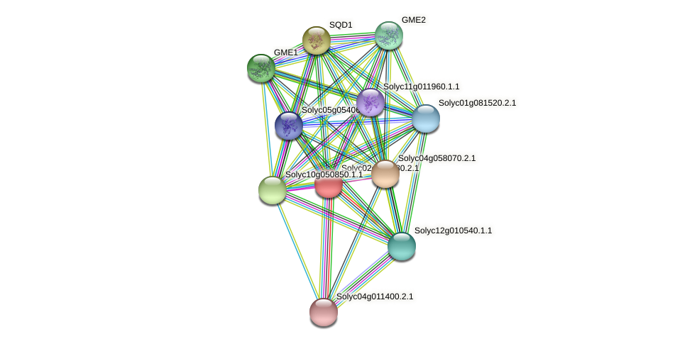 Solyc02g067080.2.1 protein (Solanum lycopersicum) - STRING interaction network